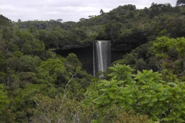 Queda Cachoeira